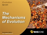 Picture of The Mechanisms of Evolution