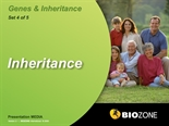 Picture of Inheritance