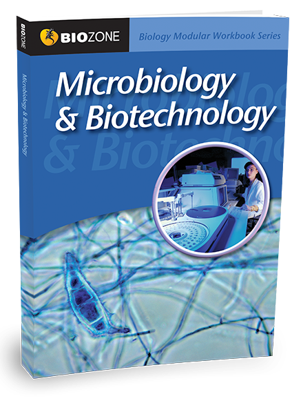 Picture of Microbiology & Biotechnology