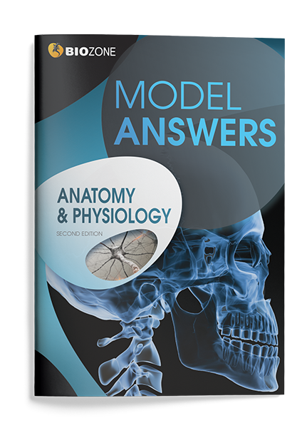 Picture of Anatomy & Physiology
